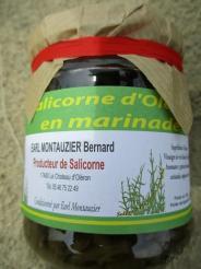 SALICORNE D OLERON EN MARINADE