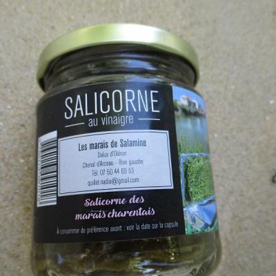 Salicorne  au vinaigre de cidre