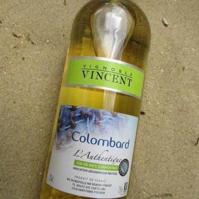 colombard vignoble vincent