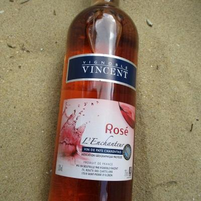 rosé vignoble vincent